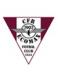 CFR Ecomax Cluj
