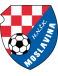 HNSK Moslavina