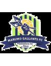 Tshakhuma Tsha Madzivhandila FC