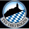 TSV Bogen