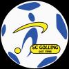 SC Golling