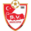 SV Anadolu Spor Koblenz