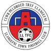 CPD Tref Llangefni Town FC