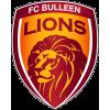 FC Bulleen Lions