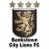 Bankstown City Lions FC