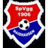 SpVgg 1906 Haidhausen