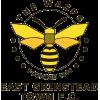 East Grinstead Town FC