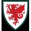 Pays de Galles U15