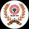 PS Semen Padang