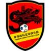 Qinghai Senke