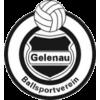 BSV Gelenau