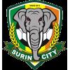 Surin City
