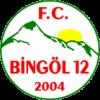 FC Bingöl 12