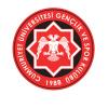Cumhuriyet Üniversitesi GSK