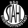 BSG Stahl Eisenhüttenstadt