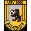 USV 1960 Berndorf II