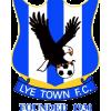 FC Lye Town