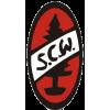 SC Wellendingen