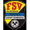 FSV Glückauf Brieske/Senftenberg